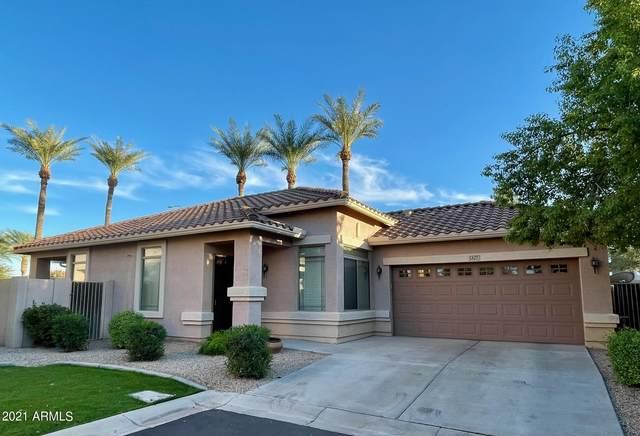 1327 E Marlin Drive, Chandler, AZ 85286 (MLS #6310980) :: Keller Williams Realty Phoenix