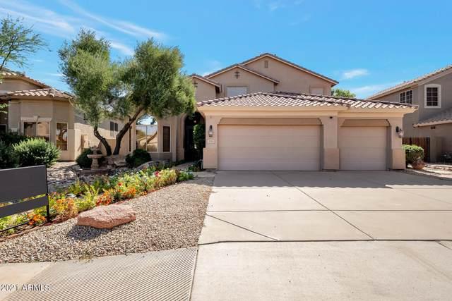 725 W Hemlock Way, Chandler, AZ 85248 (MLS #6310982) :: Dave Fernandez Team | HomeSmart