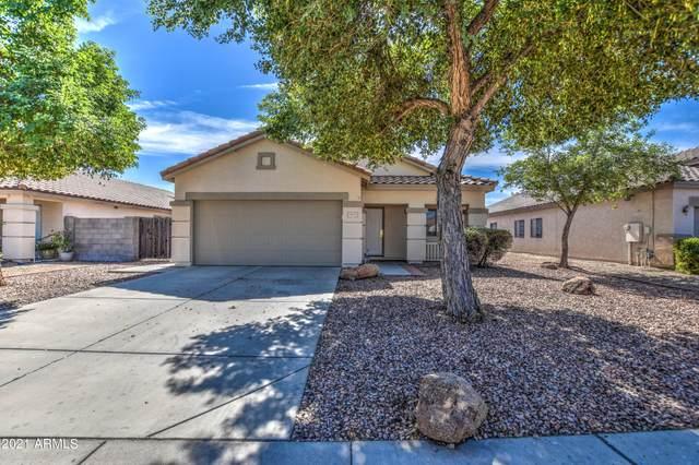 11823 W Roanoke Avenue, Avondale, AZ 85323 (MLS #6310985) :: Elite Home Advisors