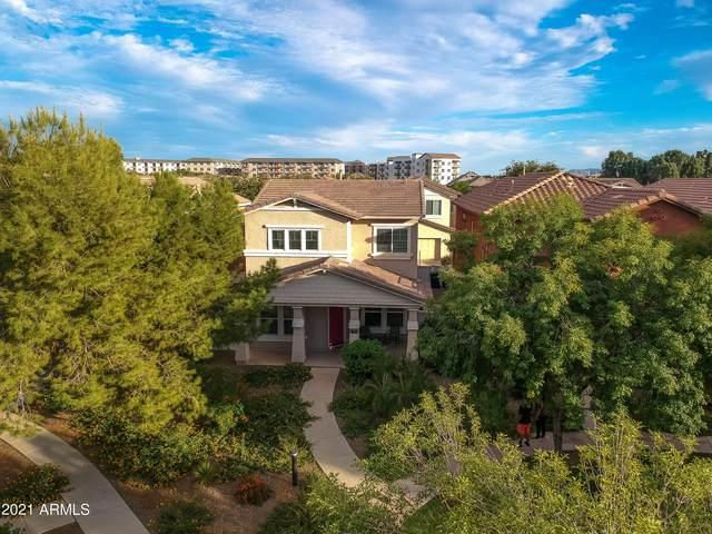 1456 S Blackberry Lane, Gilbert, AZ 85296 (MLS #6311017) :: Midland Real Estate Alliance