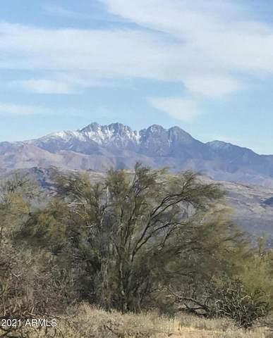 28625 N 160TH Street, Scottsdale, AZ 85262 (MLS #6311028) :: Hurtado Homes Group