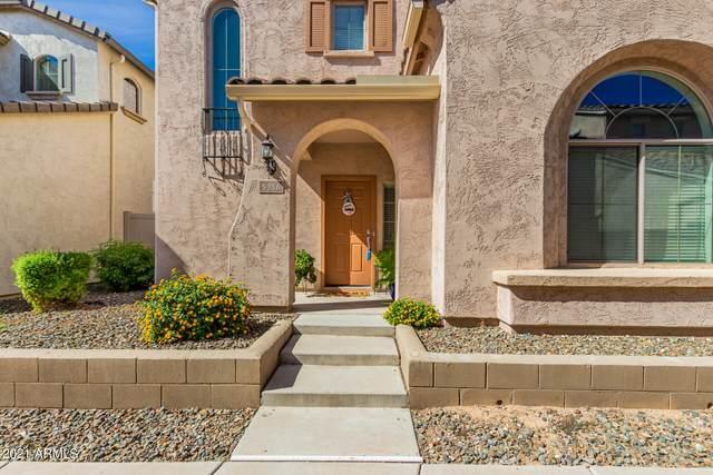 5356 W Molly Lane, Phoenix, AZ 85083 (MLS #6311033) :: Dave Fernandez Team | HomeSmart