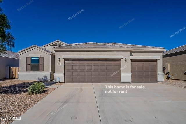 11160 E Cliffrose Lane, Florence, AZ 85132 (MLS #6311049) :: Arizona Home Group