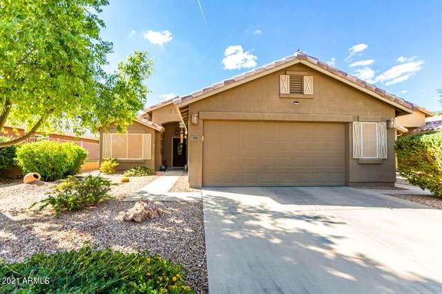 115 S Birdie Way, Casa Grande, AZ 85194 (MLS #6311050) :: Maison DeBlanc Real Estate