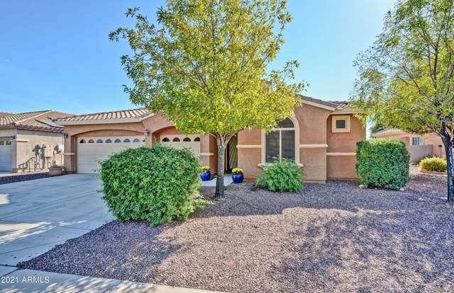 5117 N 193RD Drive, Litchfield Park, AZ 85340 (MLS #6311054) :: Dave Fernandez Team   HomeSmart