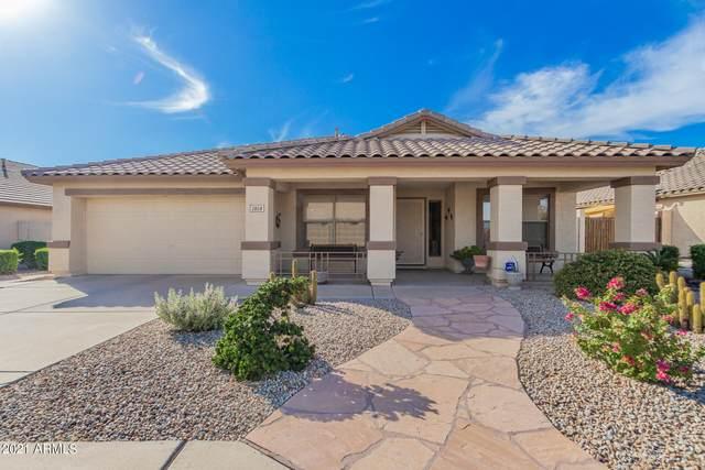 2858 S 96TH Street, Mesa, AZ 85212 (MLS #6311062) :: Yost Realty Group at RE/MAX Casa Grande