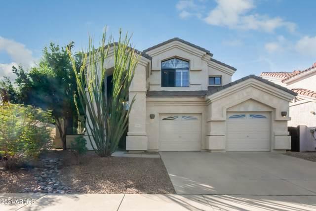 4191 E Wildcat Drive, Cave Creek, AZ 85331 (MLS #6311089) :: West Desert Group | HomeSmart