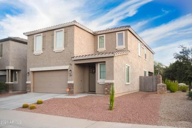 1181 E Taylor Trail, San Tan Valley, AZ 85143 (MLS #6311101) :: Arizona Home Group