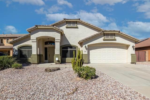 968 W Dexter Way, San Tan Valley, AZ 85143 (MLS #6311103) :: Arizona Home Group