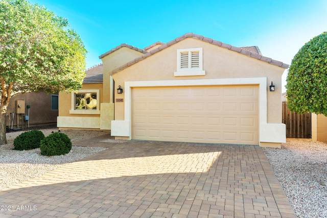 12047 W Melinda Lane, Sun City, AZ 85373 (MLS #6311111) :: Arizona Home Group
