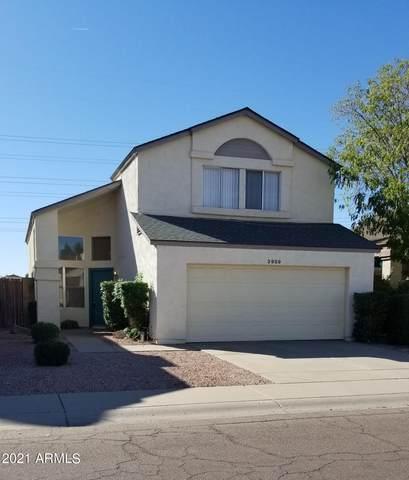 3959 W Whispering Wind Drive, Glendale, AZ 85310 (MLS #6311112) :: Dave Fernandez Team | HomeSmart