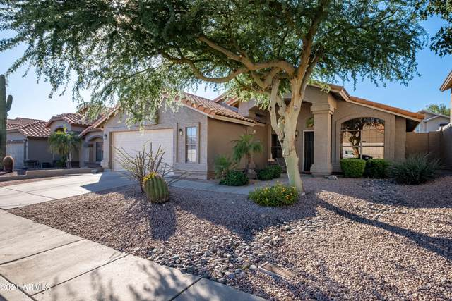 14650 S 24TH Place, Phoenix, AZ 85048 (MLS #6311125) :: Midland Real Estate Alliance