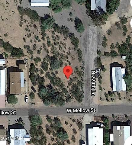 22428 Mellow Street, Wittmann, AZ 85361 (MLS #6311139) :: Midland Real Estate Alliance