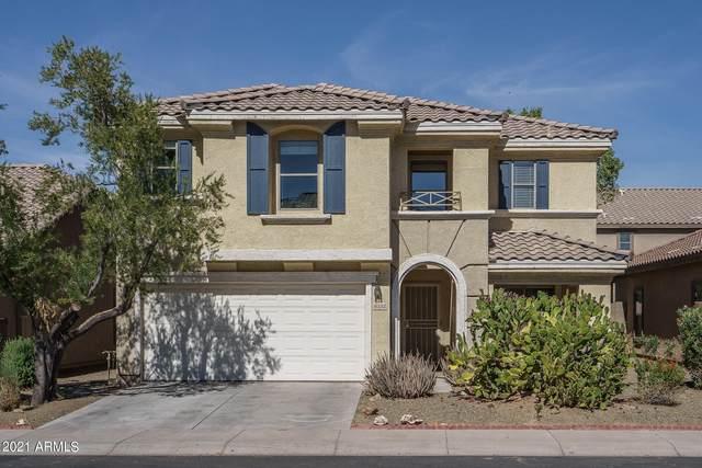6332 W Fawn Drive, Laveen, AZ 85339 (MLS #6311147) :: The Daniel Montez Real Estate Group