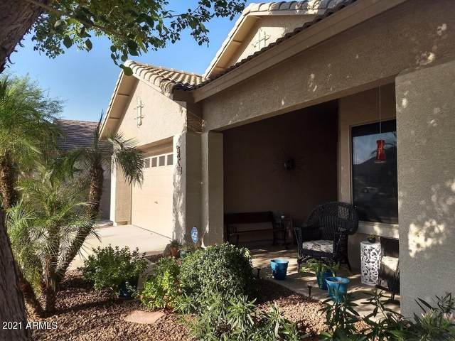 13966 N 146TH Lane, Surprise, AZ 85379 (MLS #6311173) :: Morton Team | A.Z. & Associates