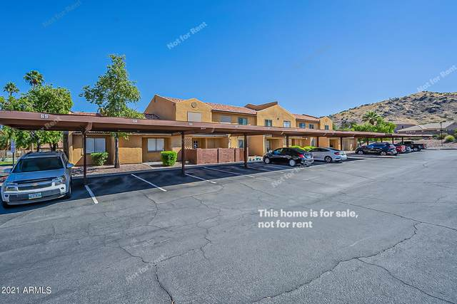 3511 E Baseline Road #1146, Phoenix, AZ 85042 (MLS #6311191) :: Arizona Home Group