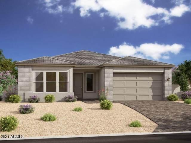 9533 E Solina Avenue, Mesa, AZ 85212 (MLS #6311219) :: Yost Realty Group at RE/MAX Casa Grande