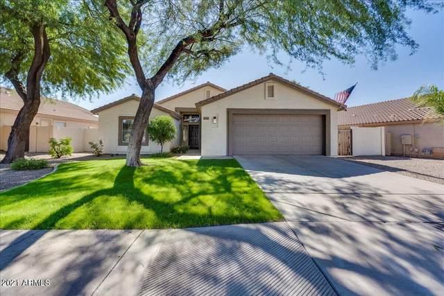 10335 E Osage Avenue, Mesa, AZ 85212 (MLS #6311234) :: The Ethridge Team