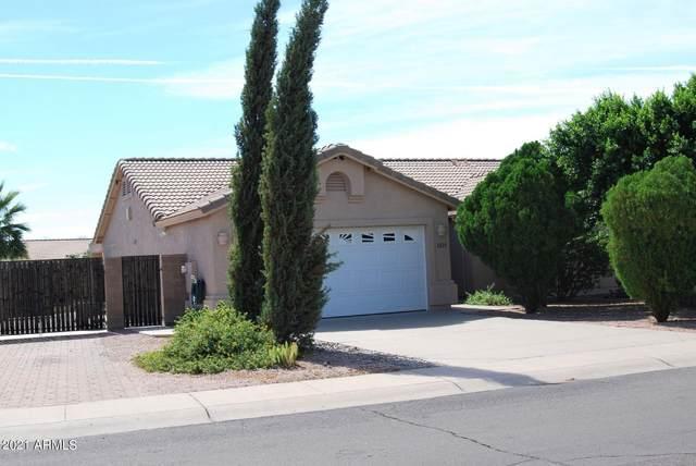 1225 W Rosal Avenue, Apache Junction, AZ 85120 (MLS #6311236) :: The Daniel Montez Real Estate Group