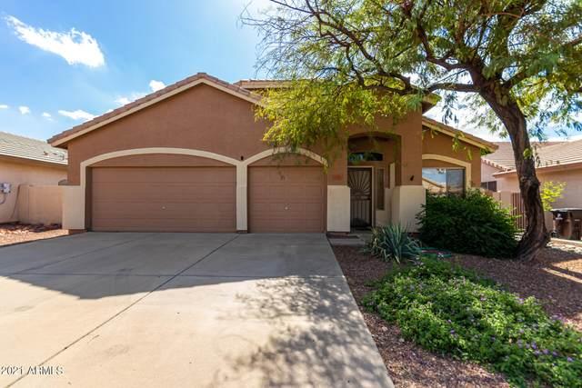 6751 W Saddlehorn Road, Peoria, AZ 85383 (MLS #6311237) :: Elite Home Advisors