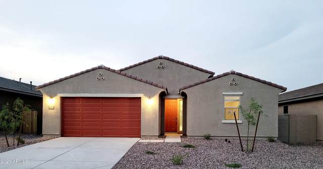 4590 W Bush Bean Way, Queen Creek, AZ 85142 (MLS #6311248) :: The Copa Team | The Maricopa Real Estate Company