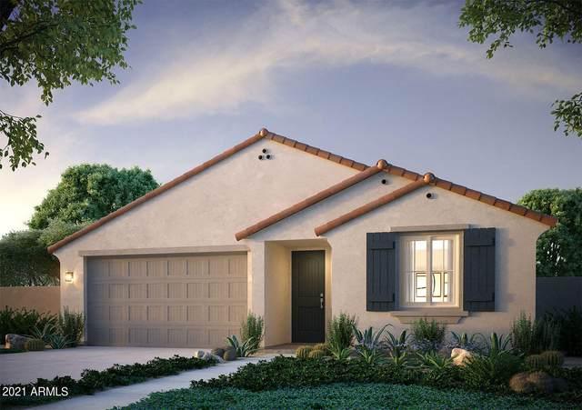 15092 W Sherman Street, Goodyear, AZ 85338 (MLS #6311256) :: Elite Home Advisors
