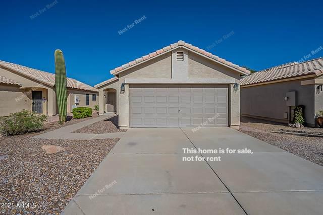 2116 E Robin Lane, Phoenix, AZ 85024 (MLS #6311292) :: Elite Home Advisors