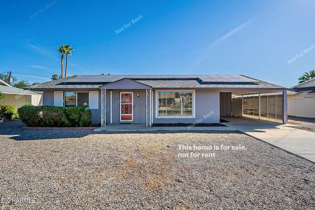 11045 N 109TH Avenue, Sun City, AZ 85351 (MLS #6311295) :: Openshaw Real Estate Group in partnership with The Jesse Herfel Real Estate Group