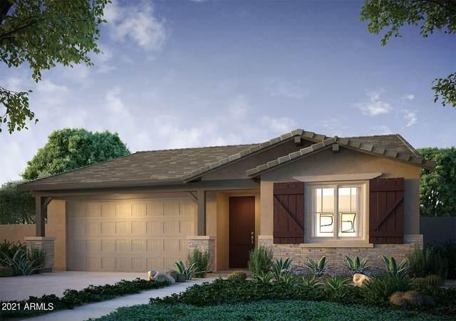 15068 W Sherman Street, Goodyear, AZ 85338 (MLS #6311298) :: Elite Home Advisors
