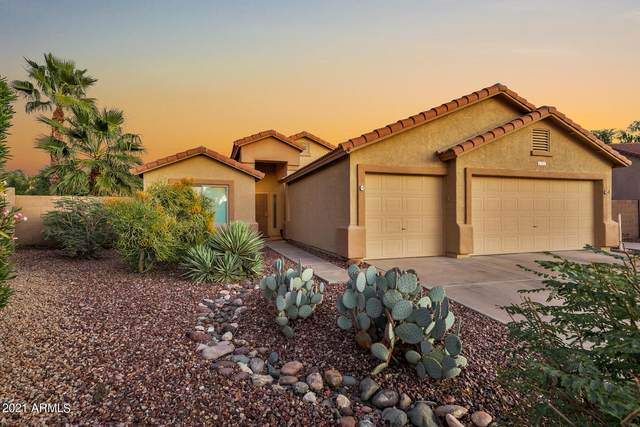 5821 E Jacaranda Street, Mesa, AZ 85205 (MLS #6311322) :: Arizona Home Group