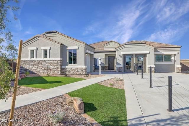 30045 W Cheery Lynn Road, Buckeye, AZ 85396 (MLS #6311363) :: Arizona Home Group