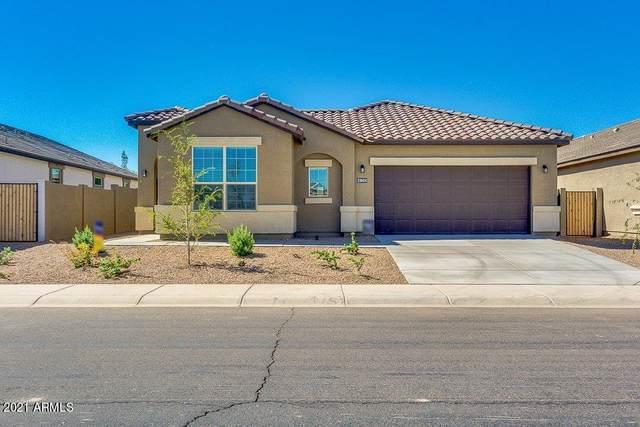 30033 W Cheery Lynn Road, Buckeye, AZ 85396 (MLS #6311366) :: Arizona Home Group