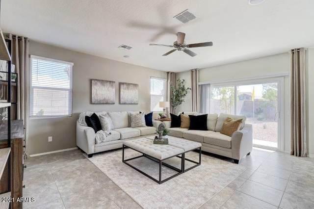 3147 N Lainey Lane, Buckeye, AZ 85396 (MLS #6311376) :: Arizona Home Group