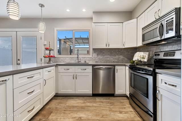 729 E Vaughn Drive, Tempe, AZ 85283 (MLS #6311393) :: Power Realty Group Model Home Center
