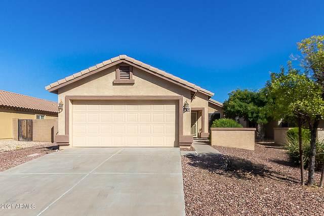22210 W Hadley Street, Buckeye, AZ 85326 (MLS #6311399) :: neXGen Real Estate