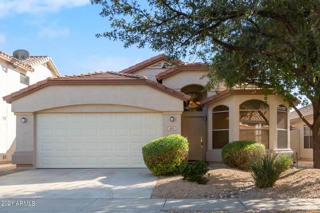 3831 E Monona Drive, Phoenix, AZ 85050 (MLS #6311450) :: Elite Home Advisors