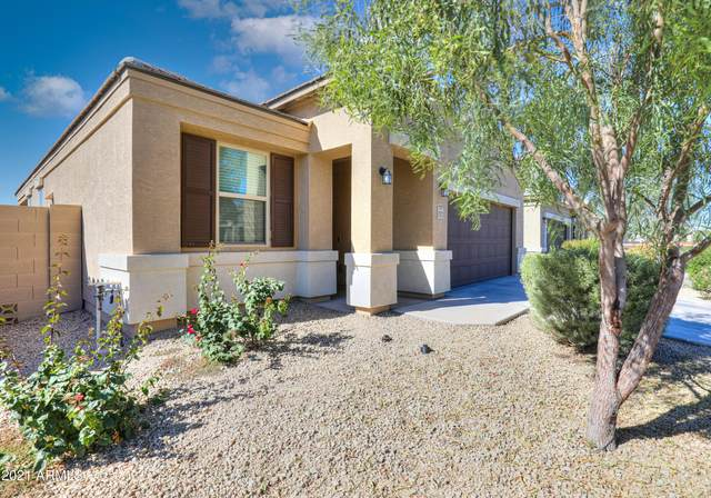 17172 N Moreno Place, Maricopa, AZ 85138 (MLS #6311454) :: Openshaw Real Estate Group in partnership with The Jesse Herfel Real Estate Group