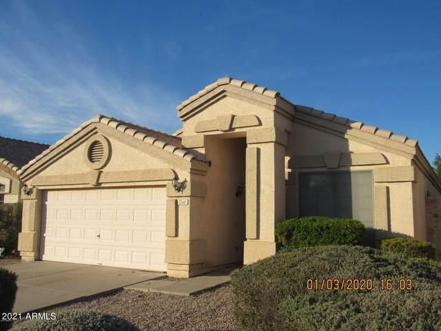 1768 E Palomino Drive, Gilbert, AZ 85296 (MLS #6311455) :: The Copa Team | The Maricopa Real Estate Company