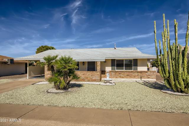 10718 W El Capitan Circle, Sun City, AZ 85351 (MLS #6311473) :: Elite Home Advisors