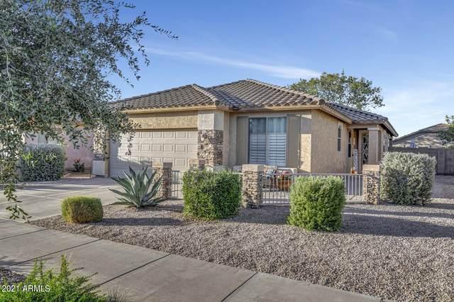 20902 E Via Del Palo, Queen Creek, AZ 85142 (MLS #6311502) :: D & R Realty LLC