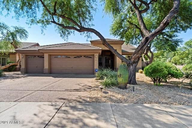 6409 E Nisbet Road, Scottsdale, AZ 85254 (MLS #6311526) :: Keller Williams Realty Phoenix