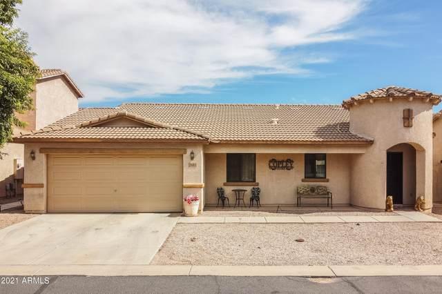 2681 S Powell Road, Apache Junction, AZ 85119 (MLS #6311532) :: The Daniel Montez Real Estate Group