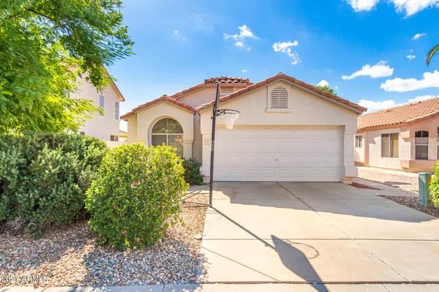 1171 W Kingbird Drive, Chandler, AZ 85286 (MLS #6311538) :: The Riddle Group