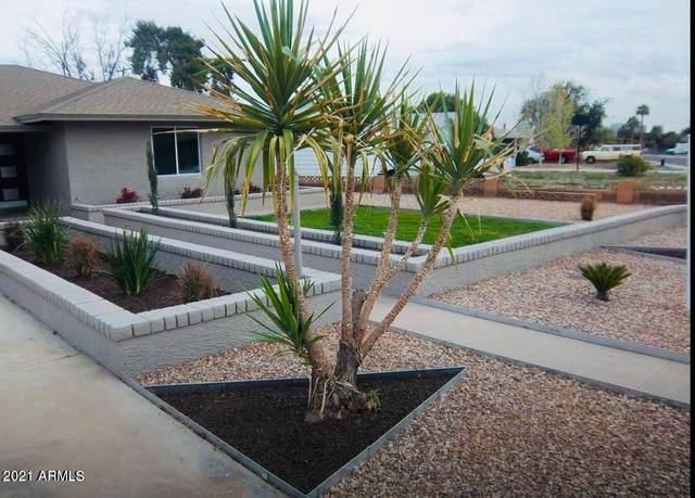 4213 N Westview Drive, Phoenix, AZ 85015 (MLS #6311569) :: Maison DeBlanc Real Estate