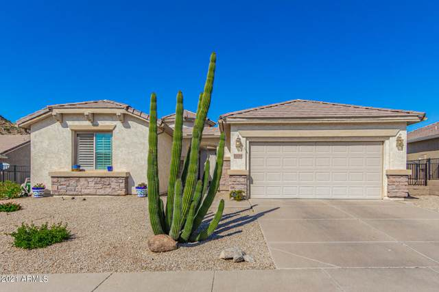 1134 W Desert Aster Road, San Tan Valley, AZ 85143 (MLS #6311592) :: The Property Partners at eXp Realty