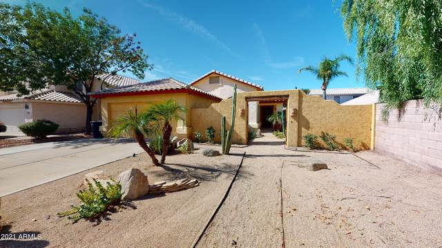 13320 N 82ND Drive, Peoria, AZ 85381 (MLS #6311593) :: Power Realty Group Model Home Center