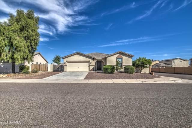 1846 W Wrangler Way, Queen Creek, AZ 85142 (MLS #6311594) :: Power Realty Group Model Home Center