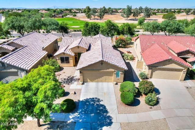 111 S Birdie Way, Casa Grande, AZ 85194 (MLS #6311616) :: Power Realty Group Model Home Center