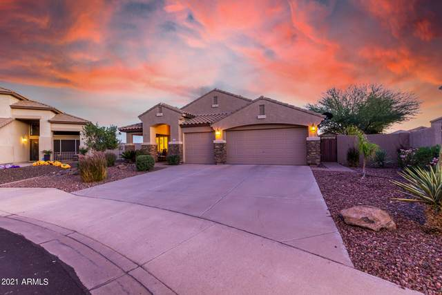 7627 W Robin Lane, Peoria, AZ 85383 (MLS #6311619) :: Power Realty Group Model Home Center