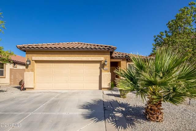 23612 W Hopi Street, Buckeye, AZ 85326 (MLS #6311625) :: Power Realty Group Model Home Center